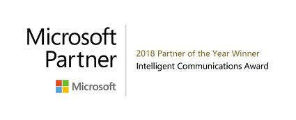 MSFT Partner of the Year_color JPEG